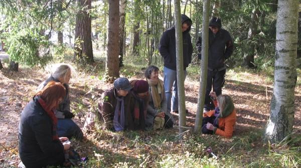 skogskultur